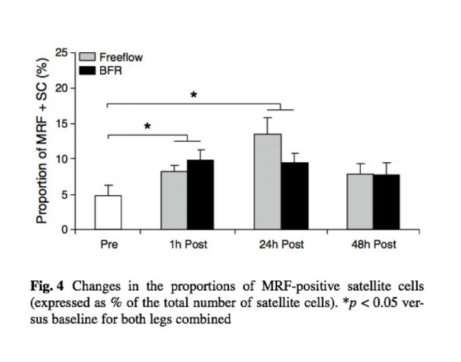 MRF-positive SC for okklusjonstrening